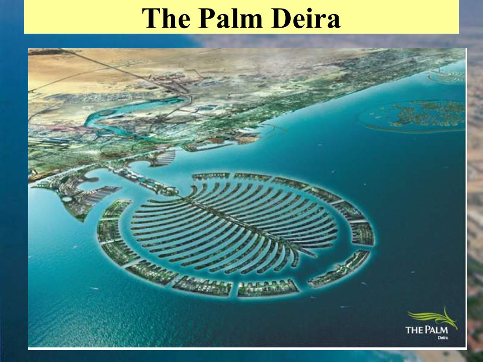 35 The Palm Deira
