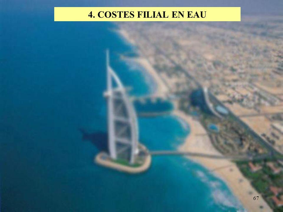 67 4. COSTES FILIAL EN EAU