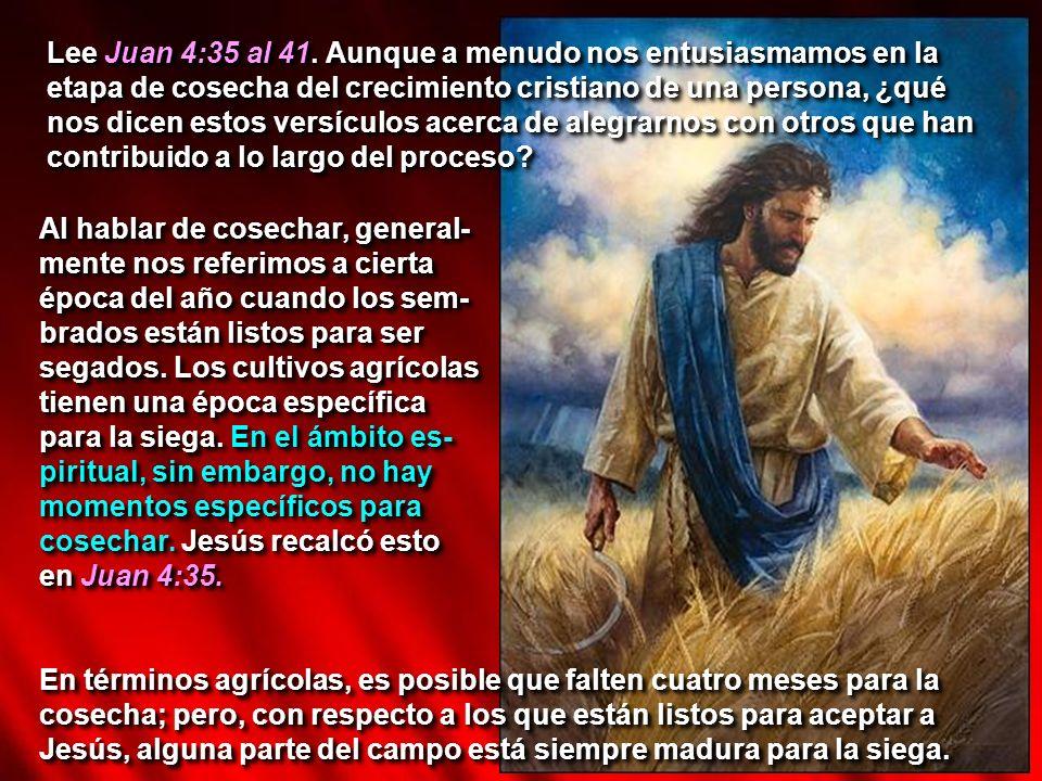 Lee Juan 4:35 al 41. Aunque a menudo nos entusiasmamos en la etapa de cosecha del crecimiento cristiano de una persona, ¿qué nos dicen estos versículo