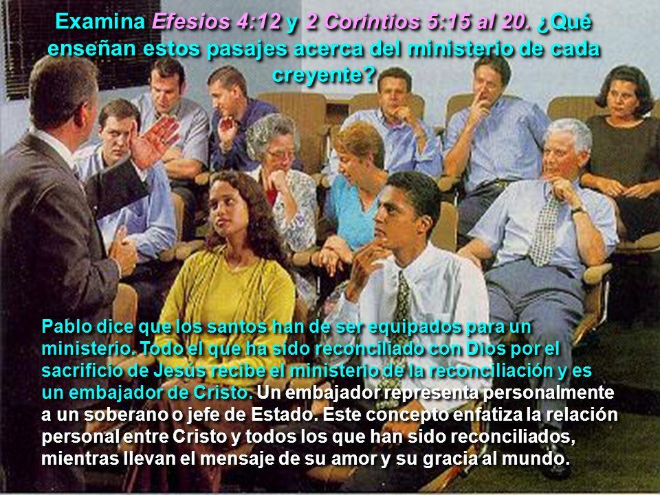 Examina Efesios 4:12 y 2 Corintios 5:15 al 20. ¿Qué enseñan estos pasajes acerca del ministerio de cada creyente? Pablo dice que los santos han de ser