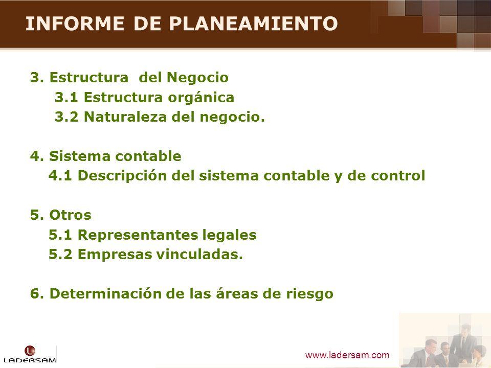 www.ladersam.com INFORME DE PLANEAMIENTO 3. Estructura del Negocio 3.1 Estructura orgánica 3.2 Naturaleza del negocio. 4. Sistema contable 4.1 Descrip