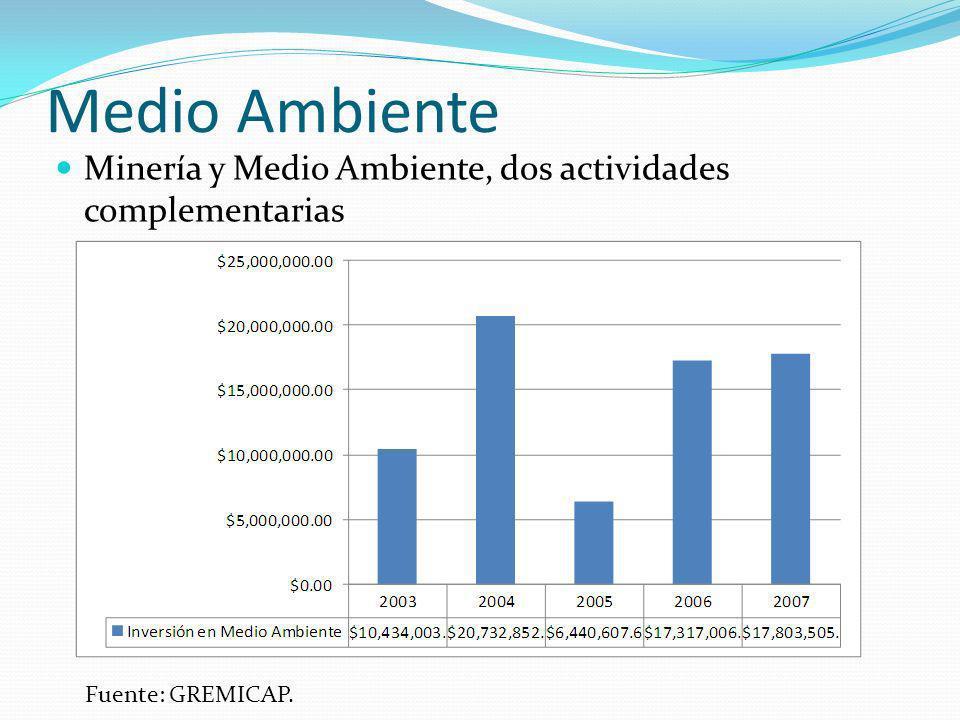 Medio Ambiente Minería y Medio Ambiente, dos actividades complementarias Fuente: GREMICAP.