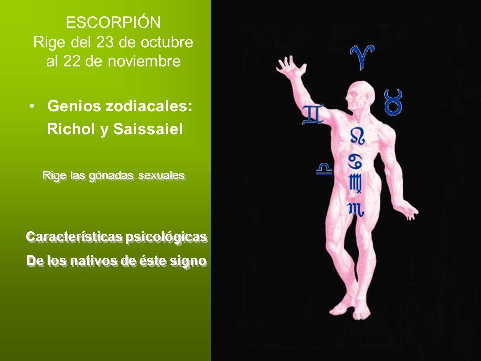 ESCORPIÓN Rige del 23 de octubre al 22 de noviembre Genios zodiacales: Richol y Saissaiel Rige las gónadas sexuales Características psicológicas De lo