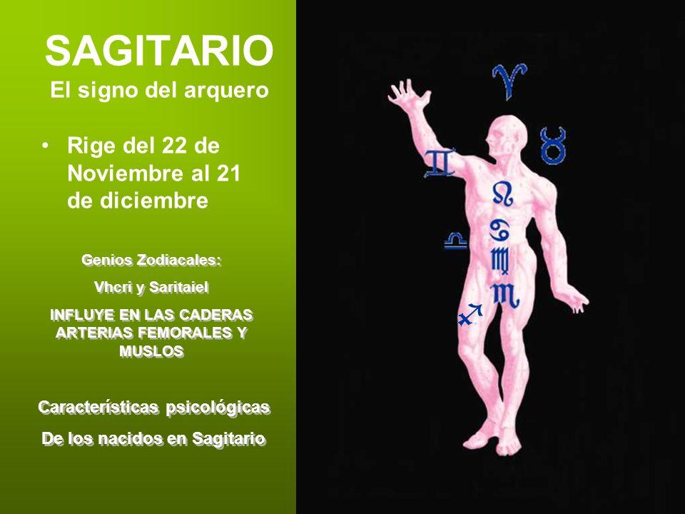 SAGITARIO El signo del arquero Rige del 22 de Noviembre al 21 de diciembre Genios Zodiacales: Vhcri y Saritaiel INFLUYE EN LAS CADERAS ARTERIAS FEMORA