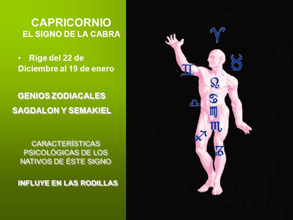 CAPRICORNIO EL SIGNO DE LA CABRA Rige del 22 de Diciembre al 19 de enero GENIOS ZODIACALES SAGDALON Y SEMAKIEL GENIOS ZODIACALES SAGDALON Y SEMAKIEL C