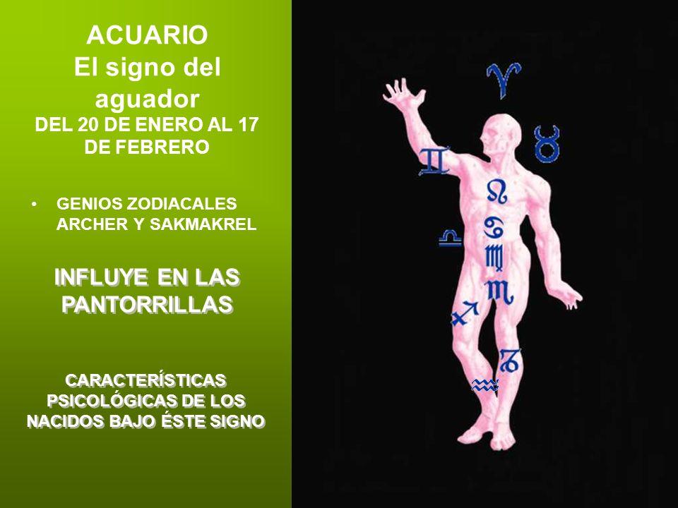 ACUARIO El signo del aguador DEL 20 DE ENERO AL 17 DE FEBRERO GENIOS ZODIACALES ARCHER Y SAKMAKREL INFLUYE EN LAS PANTORRILLAS CARACTERÍSTICAS PSICOLÓ