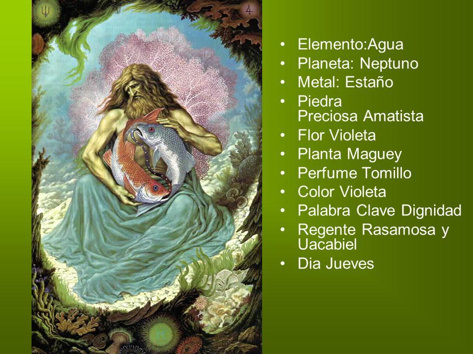 Elemento:Agua Planeta: Neptuno Metal: Estaño Piedra Preciosa Amatista Flor Violeta Planta Maguey Perfume Tomillo Color Violeta Palabra Clave Dignidad