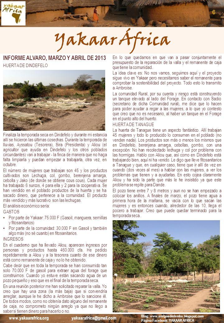 Yakaar África INFORME ALVARO, MARZO Y ABRIL DE 2013 HUERTA DE DANDE La huerta de Dande también nos ofrece buenas noticias: 30 mujeres trabajando toda la superficie de la huerta, que es mucha.