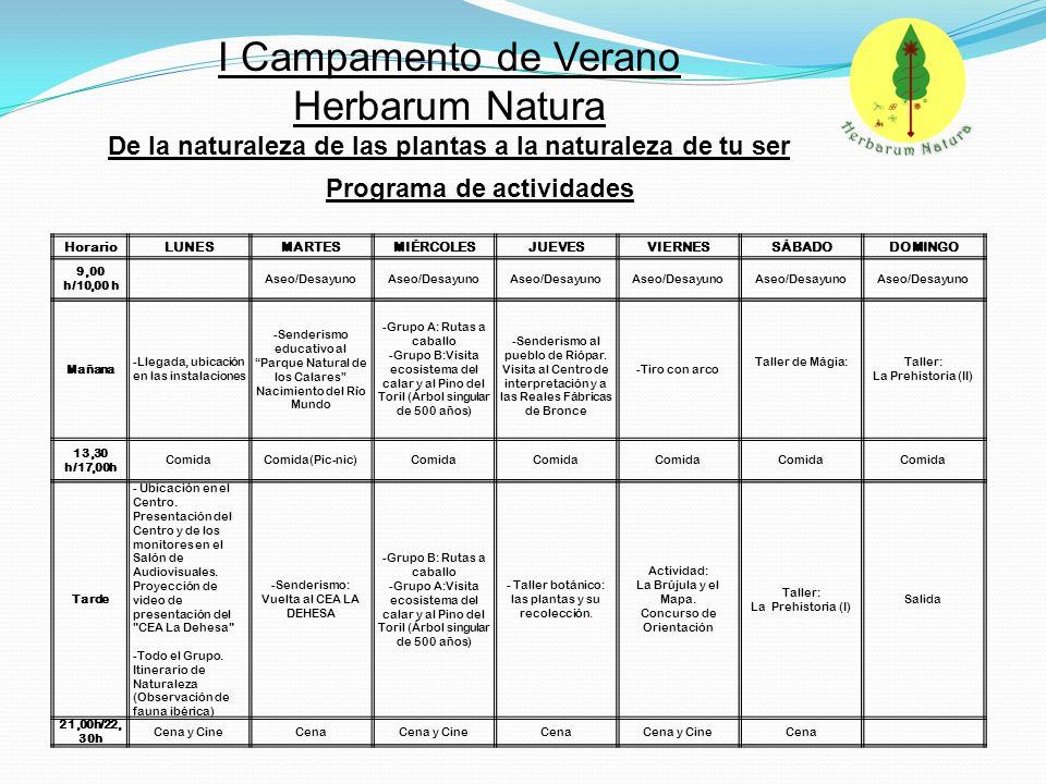 NOMBRE Y APELLIDO DEL NIÑ@ EDAD NOMBRE COMPLETO PADRE/MADRE/TUTOR/A DOMICILIO TELÉFONO / MÓVIL E-MAIL D.N.I.