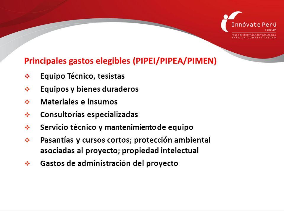 Principales gastos elegibles (PIPEI/PIPEA/PIMEN) Equipo Técnico, tesistas Equipos y bienes duraderos Materiales e insumos Consultorías especializadas