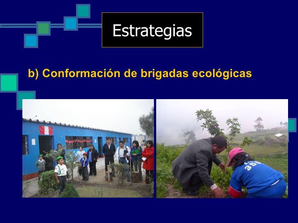 b) Conformación de brigadas ecológicas Estrategias