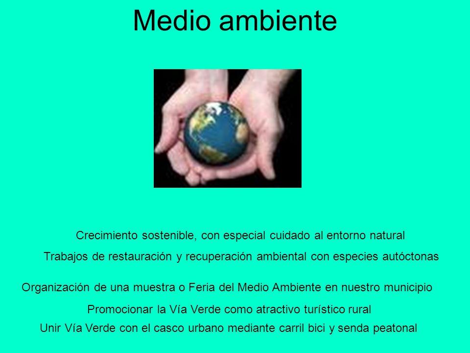 Sanidad Ampliación y reforma del Consultorio Médico Dotar de servicio de pediatría en el municipio para nuestros hijos Política de prevención y educación sanitaria (charlas y conferencias)