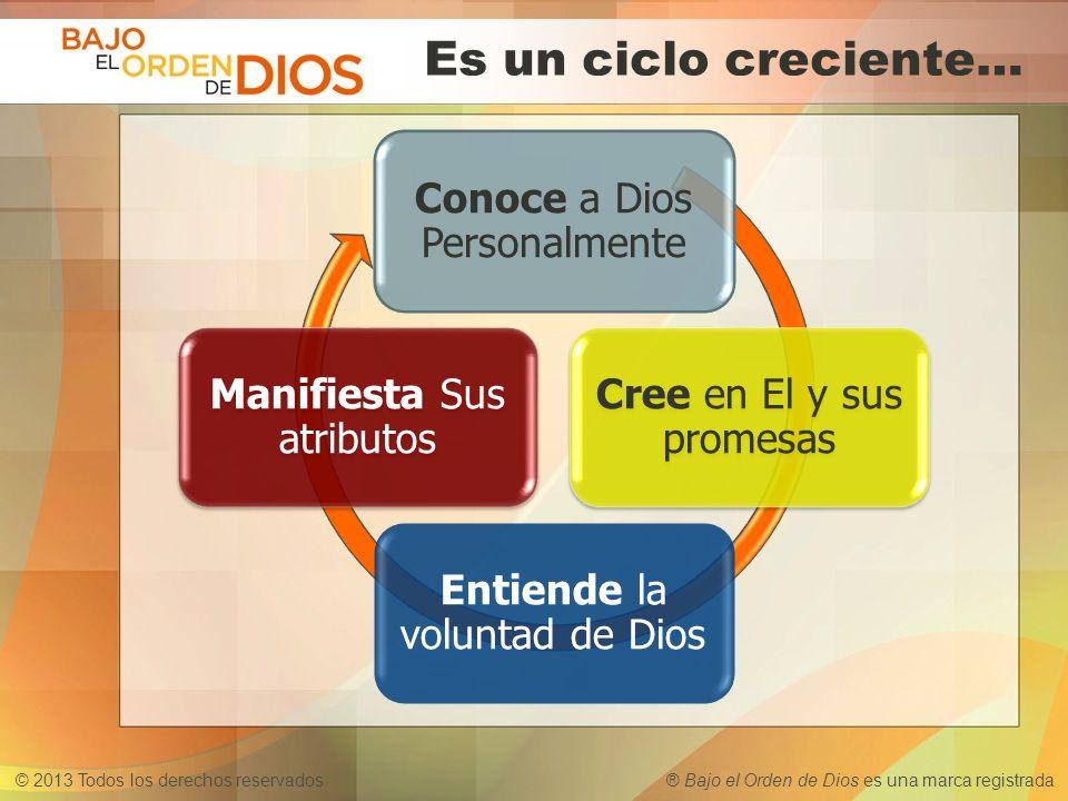 © 2013 Todos los derechos reservados ® Bajo el Orden de Dios es una marca registrada Es un ciclo creciente… Conoce a Dios Personalmente Cree en El y s