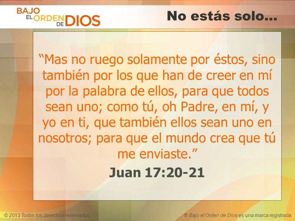 © 2013 Todos los derechos reservados ® Bajo el Orden de Dios es una marca registrada No estás solo… Mas no ruego solamente por éstos, sino también por