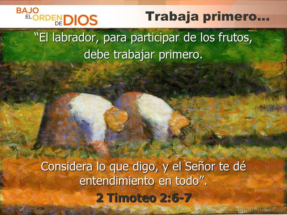 © 2013 Todos los derechos reservados ® Bajo el Orden de Dios es una marca registrada Trabaja primero… El labrador, para participar de los frutos,El la