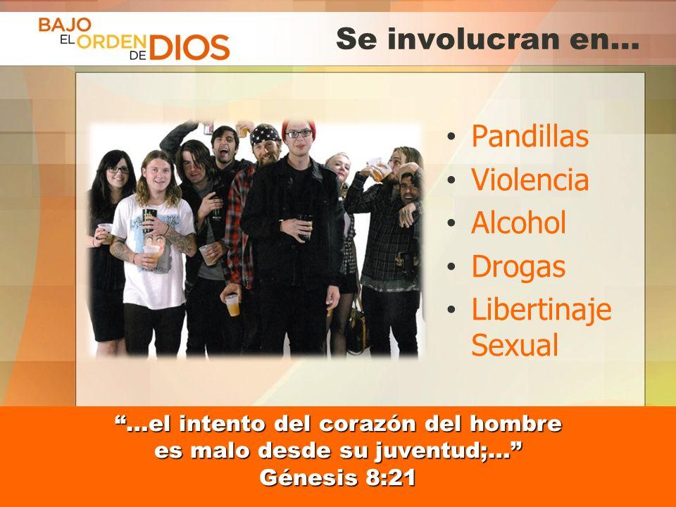 © 2013 Todos los derechos reservados ® Bajo el Orden de Dios es una marca registrada Se involucran en… Pandillas Violencia Alcohol Drogas Libertinaje