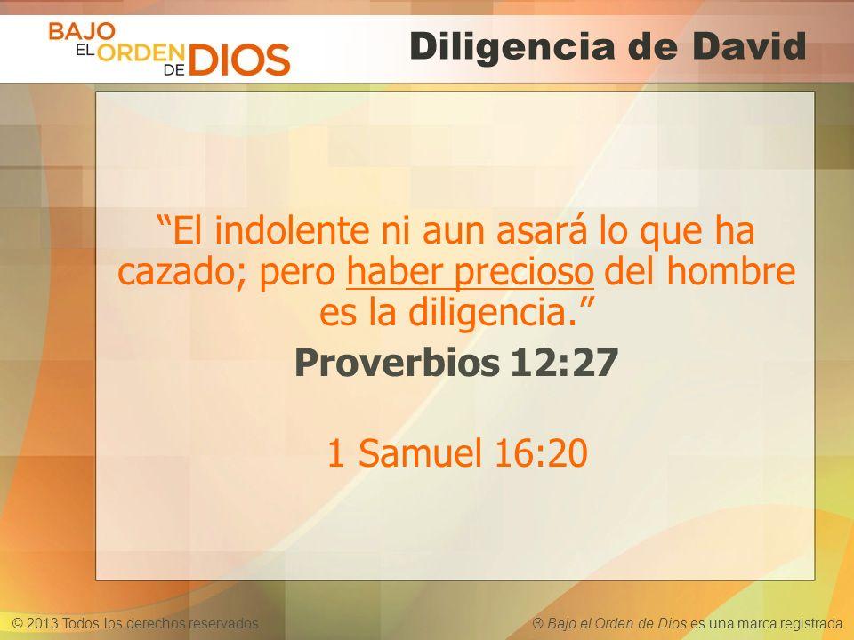 © 2013 Todos los derechos reservados ® Bajo el Orden de Dios es una marca registrada Diligencia de David El indolente ni aun asará lo que ha cazado; p