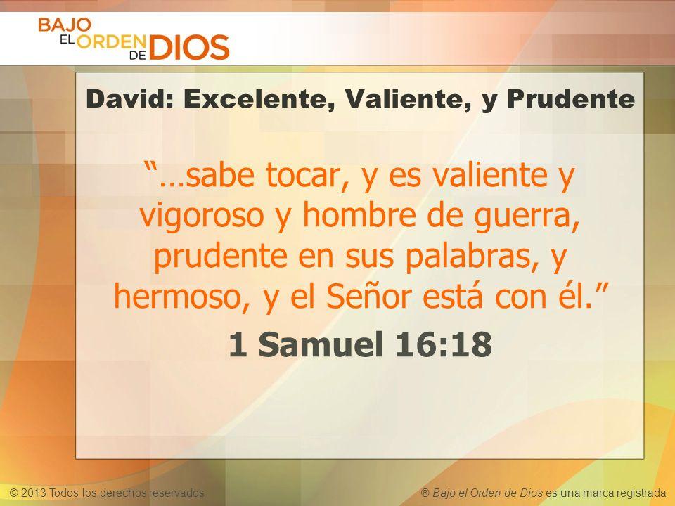 © 2013 Todos los derechos reservados ® Bajo el Orden de Dios es una marca registrada David: Excelente, Valiente, y Prudente …sabe tocar, y es valiente