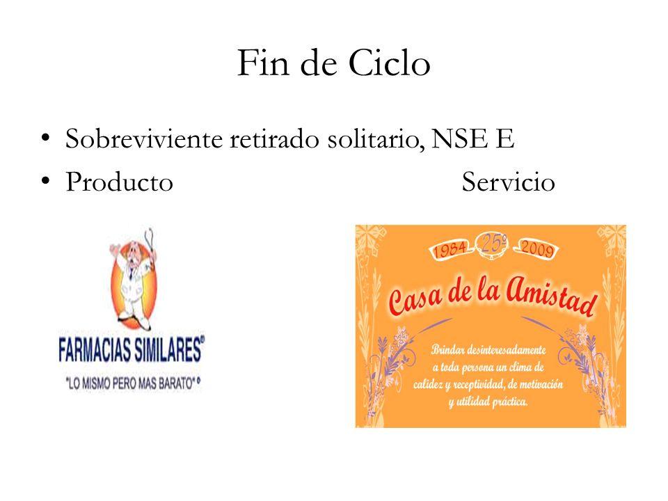 Fin de Ciclo Sobreviviente retirado solitario, NSE E Producto Servicio