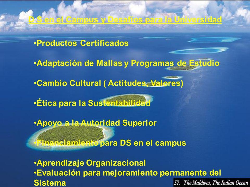 D S en el Campus y Desafíos para la Universidad Productos Certificados Adaptación de Mallas y Programas de Estudio Cambio Cultural ( Actitudes, Valore
