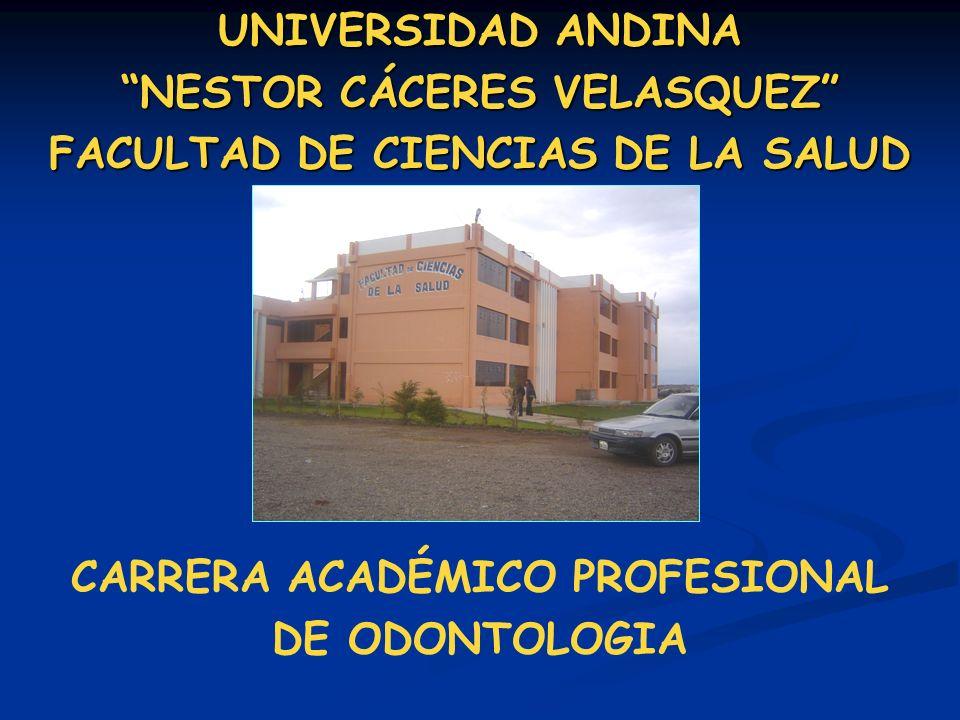 CARRERA ACADÉMICO PROFESIONAL DE ODONTOLOGIA UNIVERSIDAD ANDINA NESTOR CÁCERES VELASQUEZ FACULTAD DE CIENCIAS DE LA SALUD