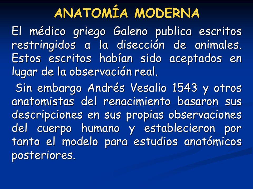 ANATOMÍA MODERNA El médico griego Galeno publica escritos restringidos a la disección de animales. Estos escritos habían sido aceptados en lugar de la