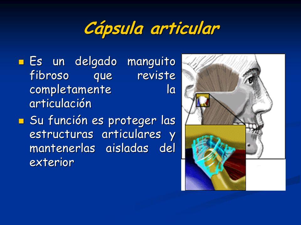 Cápsula articular Es un delgado manguito fibroso que reviste completamente la articulación Es un delgado manguito fibroso que reviste completamente la