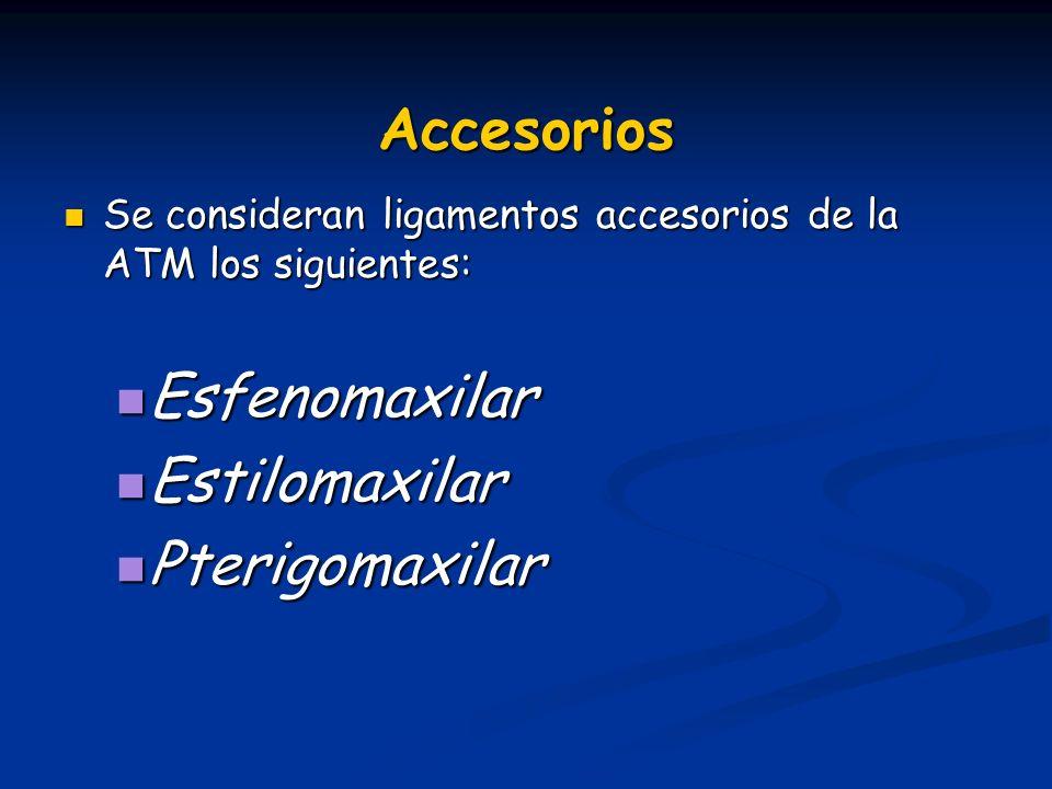 Accesorios Se consideran ligamentos accesorios de la ATM los siguientes: Se consideran ligamentos accesorios de la ATM los siguientes: Esfenomaxilar E