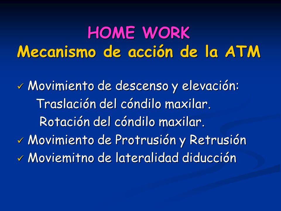 HOME WORK Mecanismo de acción de la ATM Movimiento de descenso y elevación: Movimiento de descenso y elevación: Traslación del cóndilo maxilar. Trasla