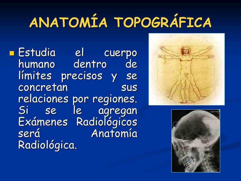 ANATOMÍA TOPOGRÁFICA Estudia el cuerpo humano dentro de límites precisos y se concretan sus relaciones por regiones. Si se le agregan Exámenes Radioló