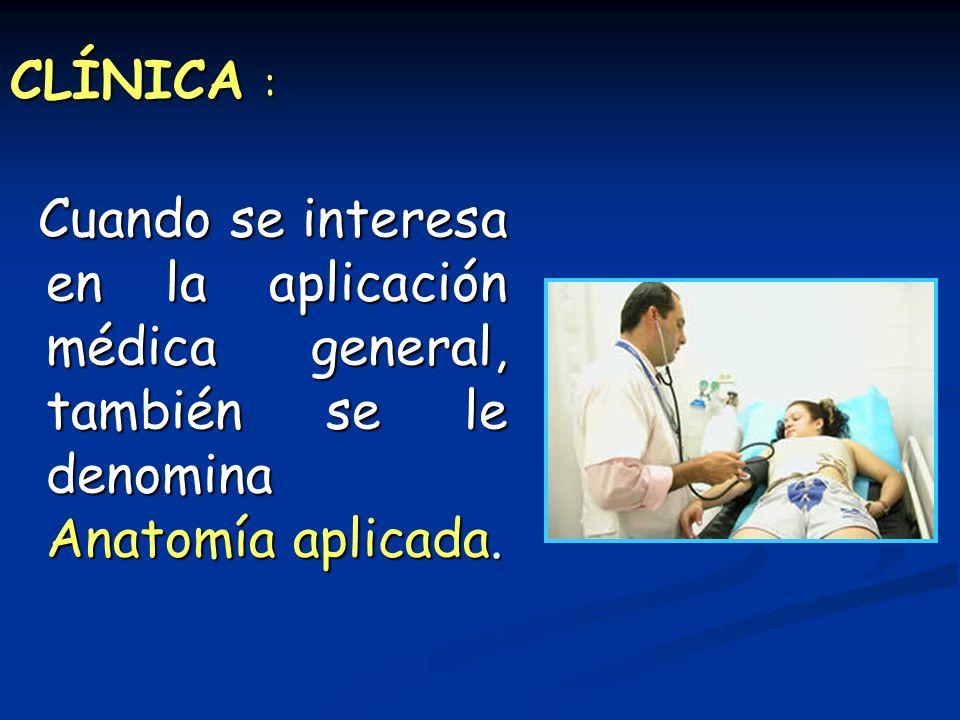 CLÍNICA : Cuando se interesa en la aplicación médica general, también se le denomina Anatomía aplicada. Cuando se interesa en la aplicación médica gen