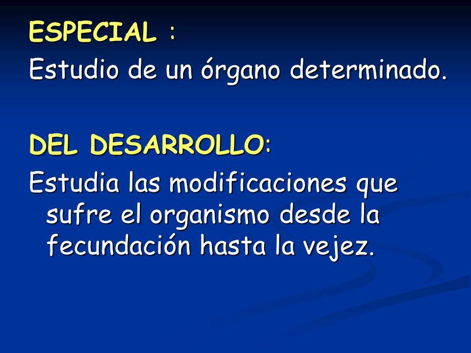 ESPECIAL : Estudio de un órgano determinado. DEL DESARROLLO: Estudia las modificaciones que sufre el organismo desde la fecundación hasta la vejez.