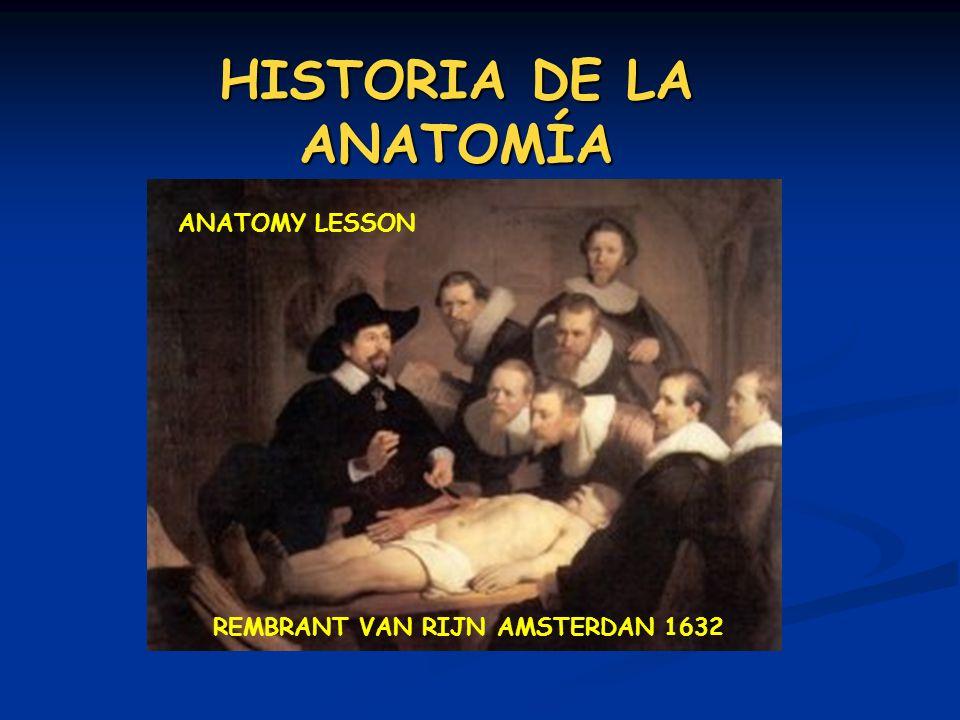 HISTORIA DE LA ANATOMÍA REMBRANT VAN RIJN AMSTERDAN 1632 ANATOMY LESSON