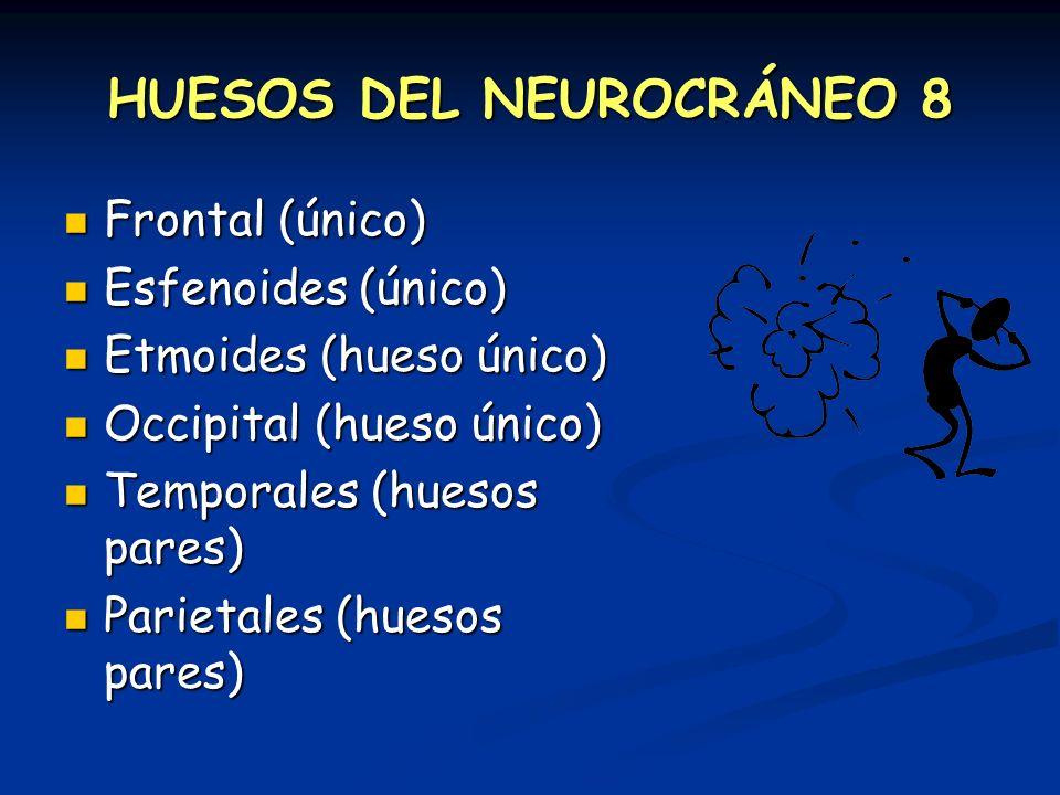 HUESOS DEL NEUROCRÁNEO 8 Frontal (único) Frontal (único) Esfenoides (único) Esfenoides (único) Etmoides (hueso único) Etmoides (hueso único) Occipital