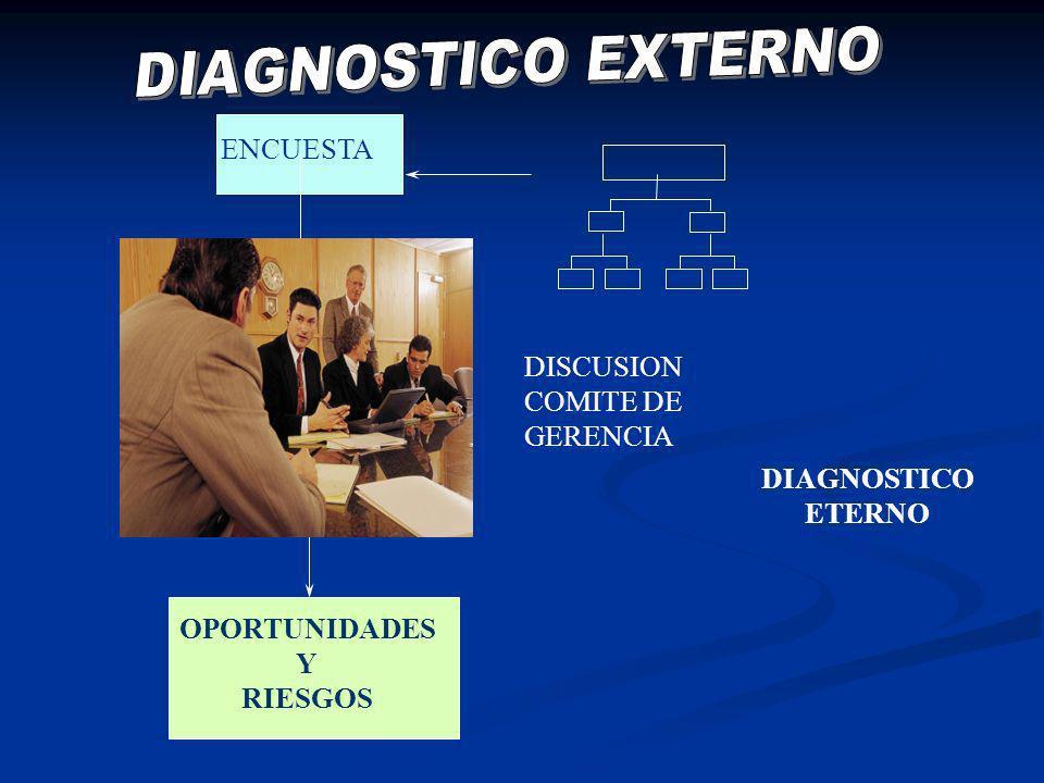 ENCUESTA DISCUSION COMITE DE GERENCIA OPORTUNIDADES Y RIESGOS DIAGNOSTICO ETERNO