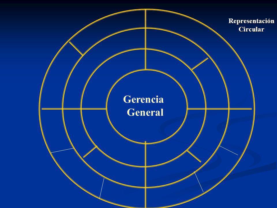 Gerencia General RepresentaciónCircular