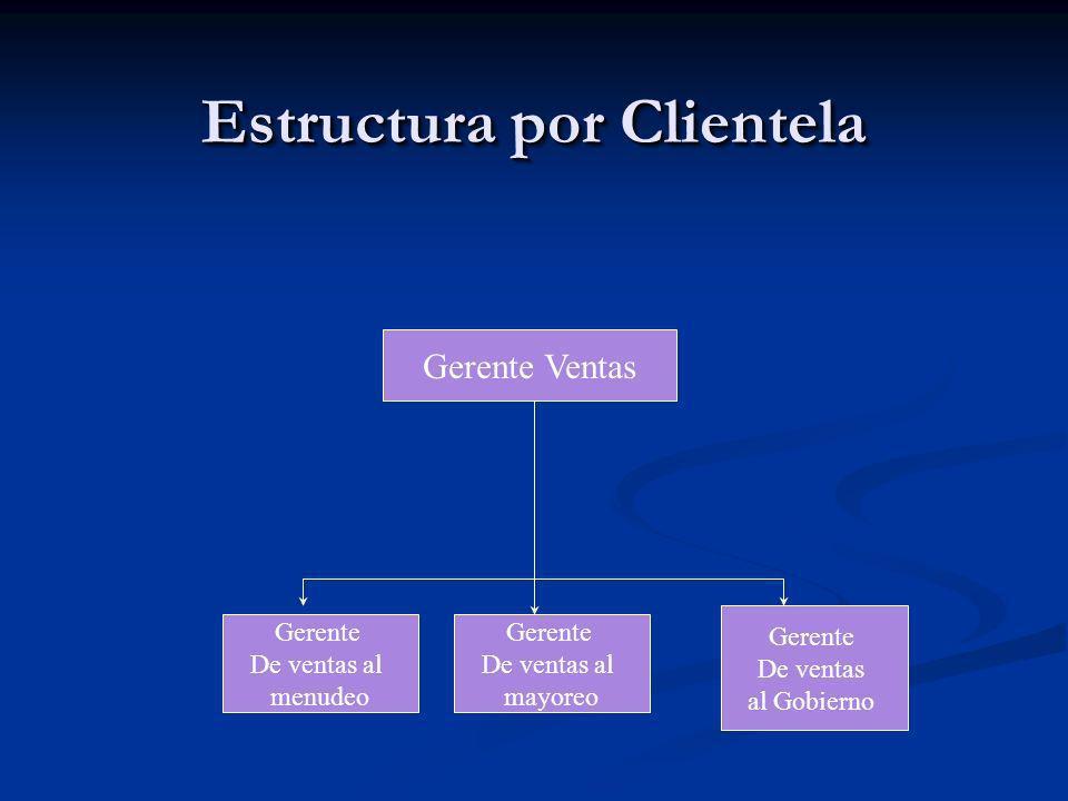 Estructura por Clientela Gerente Ventas Gerente De ventas al menudeo Gerente De ventas al mayoreo Gerente De ventas al Gobierno