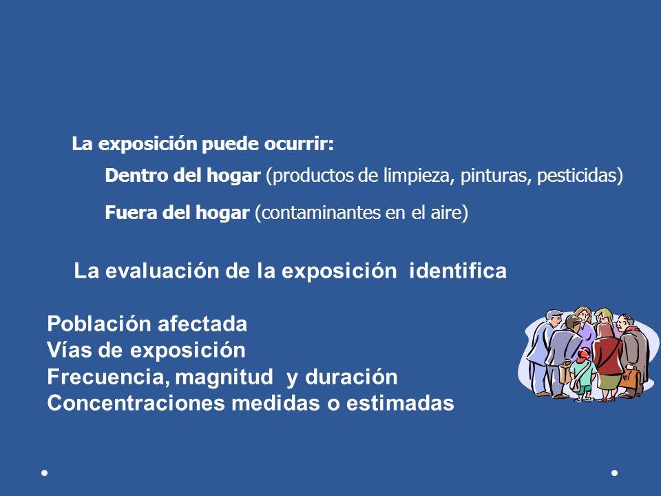 La exposición puede ocurrir: Dentro del hogar (productos de limpieza, pinturas, pesticidas) Fuera del hogar (contaminantes en el aire) La evaluación d