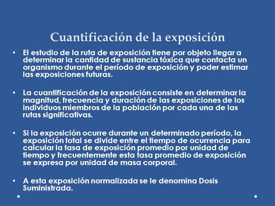 Cuantificación de la exposición El estudio de la ruta de exposición tiene por objeto llegar a determinar la cantidad de sustancia tóxica que contacta