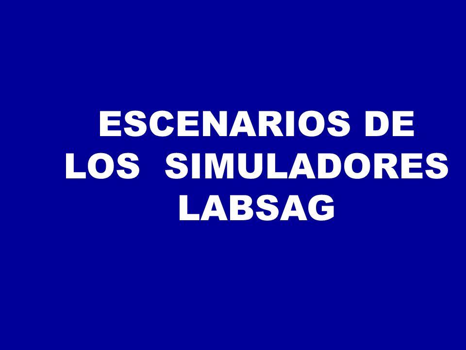 ESCENARIOS DE LOS SIMULADORES LABSAG