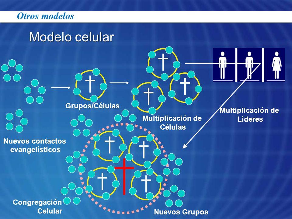 Modelo celular Nuevos contactos evangelísticos Grupos/Células Multiplicación de Células Multiplicación de Líderes Congregación Celular Nuevos Grupos O