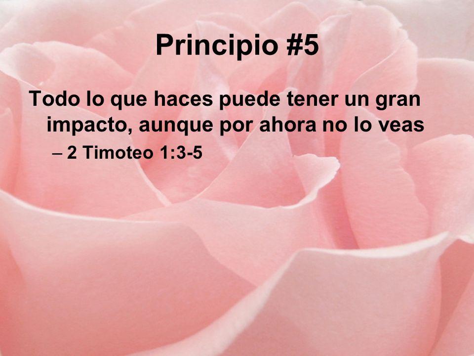 Principio #5 Todo lo que haces puede tener un gran impacto, aunque por ahora no lo veas –2 Timoteo 1:3-5