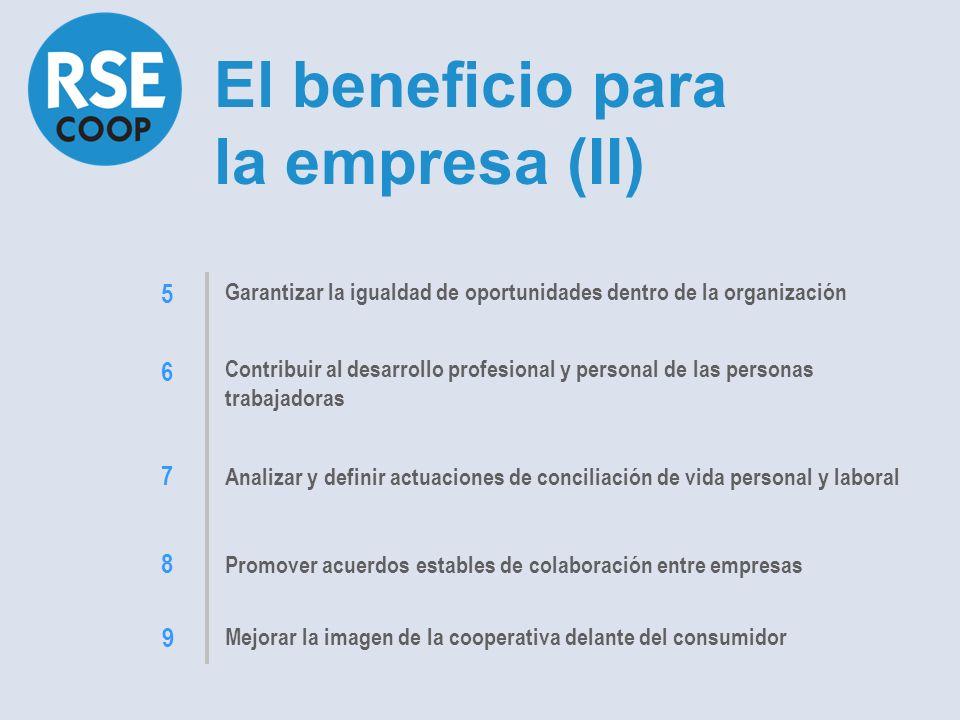Mejorar la gestión empresarial, con la definición de planes estratégicos, y la competitividad Profesionalizar los cargos de dirección y los órganos de gobierno Contribuir al desarrollo sostenible, con la incorporación de medidas de preservación del medio Implantar o reforzar una nueva cultura empresarial en la organización, fundamentada en los valores de respeto para el entorno y para las personas El beneficio para la empresa (I) 1 2 3 4
