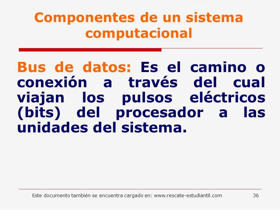 Componentes de un sistema computacional Bus de datos: Es el camino o conexión a través del cual viajan los pulsos eléctricos (bits) del procesador a l