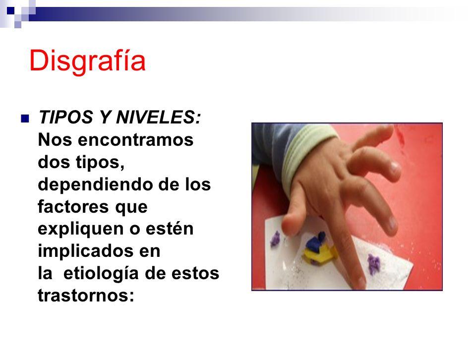 Disgrafía TIPOS Y NIVELES: Nos encontramos dos tipos, dependiendo de los factores que expliquen o estén implicados en la etiología de estos trastornos
