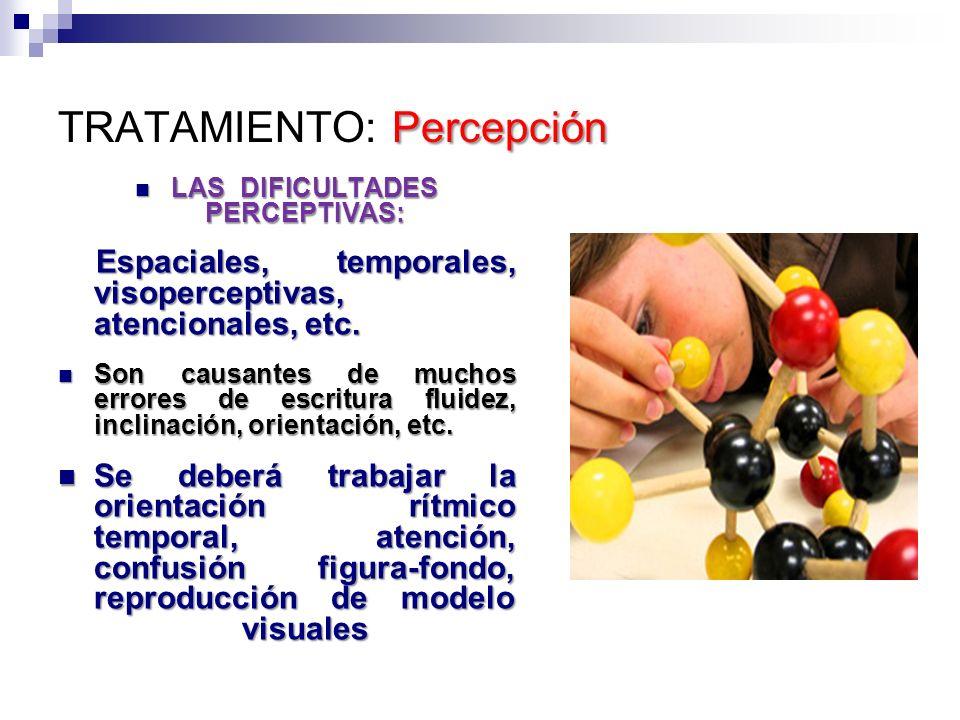 Percepción TRATAMIENTO: Percepción LAS DIFICULTADES PERCEPTIVAS: LAS DIFICULTADES PERCEPTIVAS: Espaciales, temporales, visoperceptivas, atencionales,