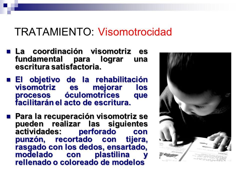 TRATAMIENTO: Visomotrocidad La coordinación visomotriz es fundamental para lograr una escritura satisfactoria. La coordinación visomotriz es fundament
