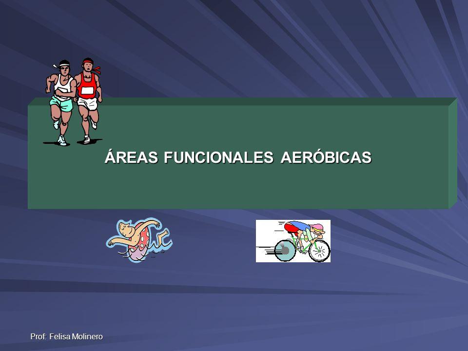 Prof: Felisa Molinero ÁREAS FUNCIONALES AERÓBICAS