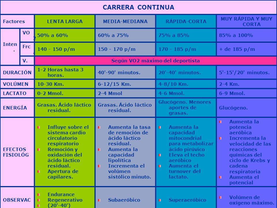 Prof: Felisa Molinero CARRERA CONTINUA FactoresLENTA LARGAMEDIA-MEDIANARÁPIDA-CORTA MUY RÁPIDA Y MUY CORTA Inten. VO 2 50% a 60%60% a 75%75% a 85%85%