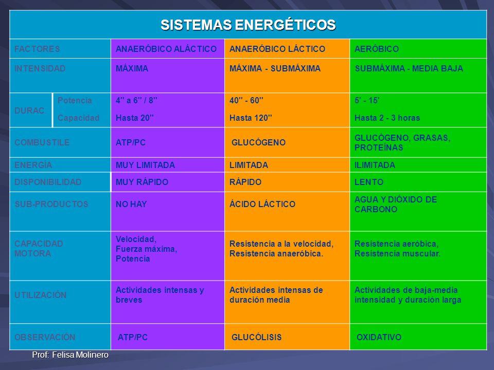 Prof: Felisa Molinero SISTEMAS ENERGÉTICOS FACTORESANAERÓBICO ALÁCTICOANAERÓBICO LÁCTICOAERÓBICO INTENSIDADMÁXIMAMÁXIMA - SUBMÁXIMASUBMÁXIMA - MEDIA B